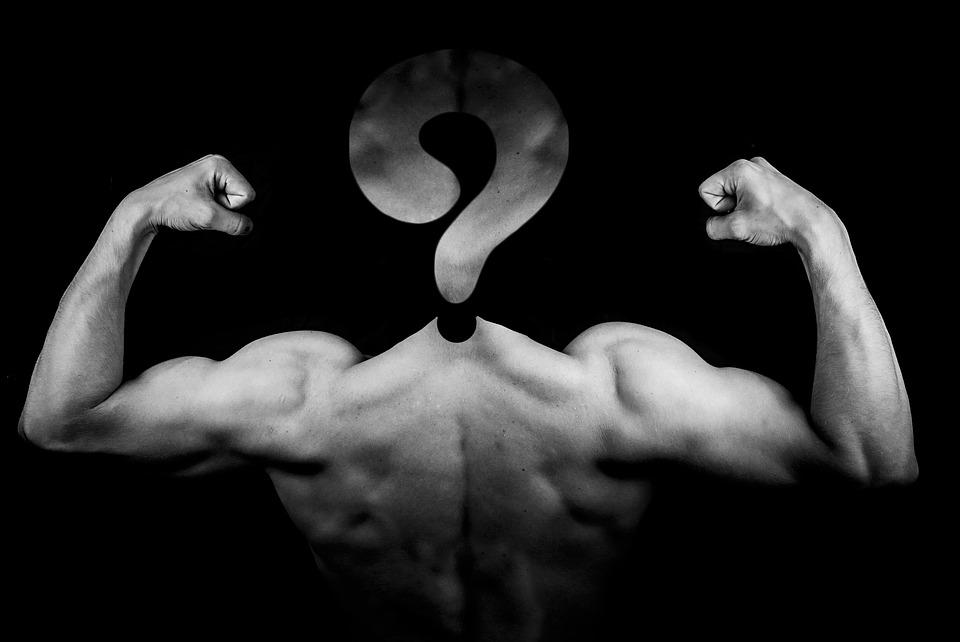 body building fitness