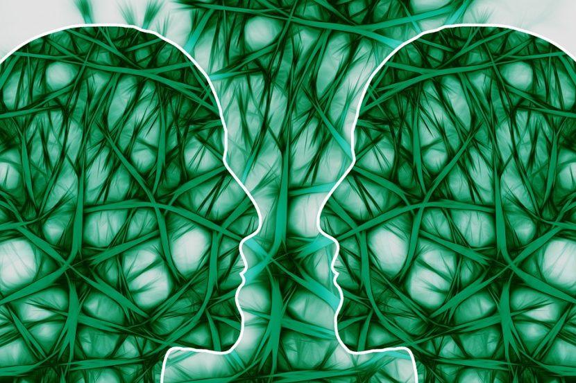 Conscious Mind Living Body