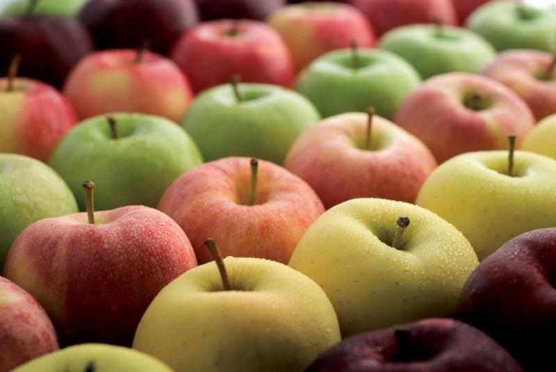 weight loss super-foods
