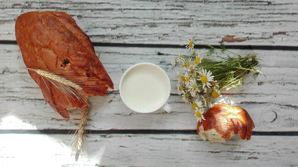Weight Loss Healthy Foods Bread & Milk?