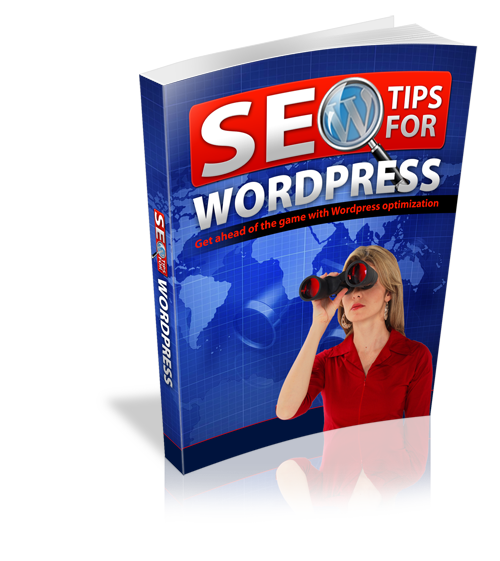 SEO Tips For WordPress Get To Page 1