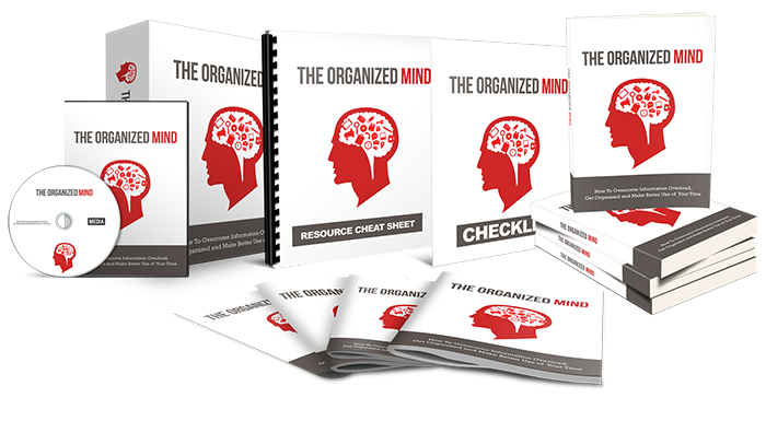 Organized Mind Entrepreneur Lifestyle